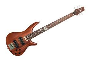 bas-guitar